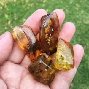 POST amber specimen