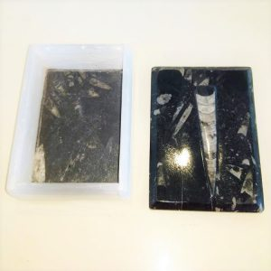selenite and fossil box from Morocco