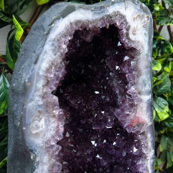 buy medium Amethyst Cave