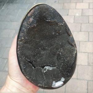 Septarian Nodule Egg - Velvet