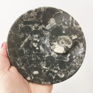 buy hand crafted fossil plate from Morocco in Australia