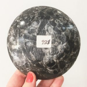 buy fossil plate - small